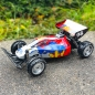 Preview: Rayline R211 Racing Buggy